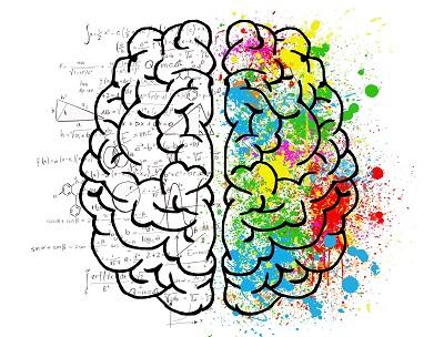 Czym się różni lewa półkula mózgu od prawej?